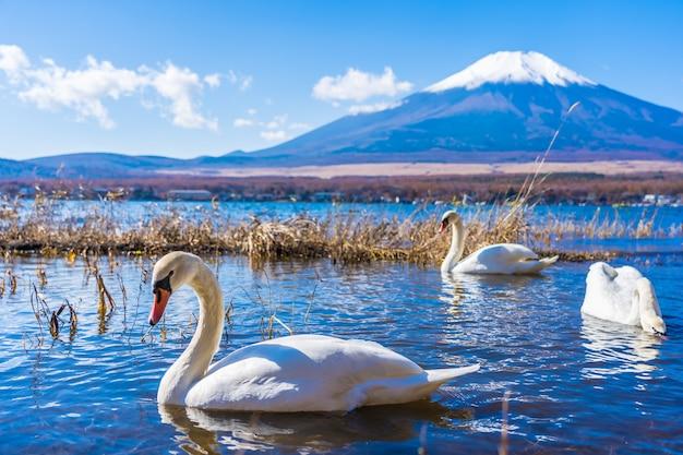 Hermoso paisaje de montaña fuji alrededor del lago yamanakako Foto gratis
