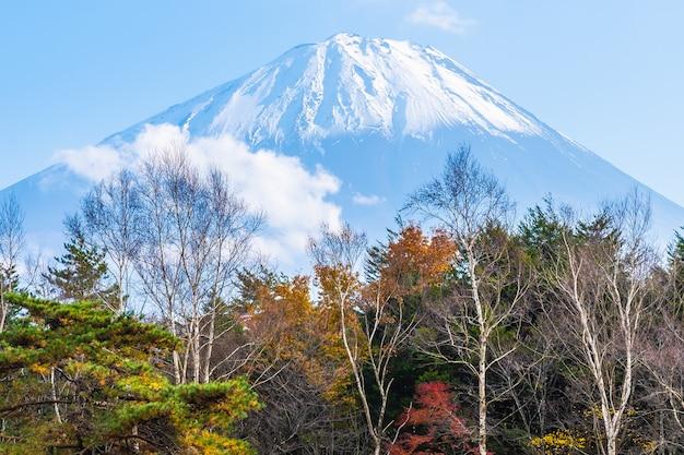 Hermoso paisaje de montaña fuji Foto gratis