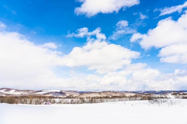 Hermoso paisaje de naturaleza al aire libre con un árbol en la temporada de invierno de nieve en hokkaido Foto gratis