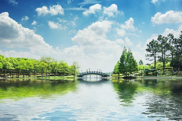 El hermoso parque Foto gratis