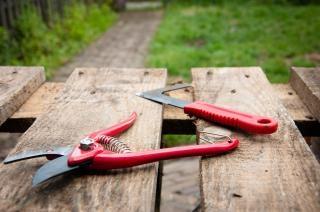 Herramientas de jardiner a descargar fotos gratis for Imagenes de jardineria gratis