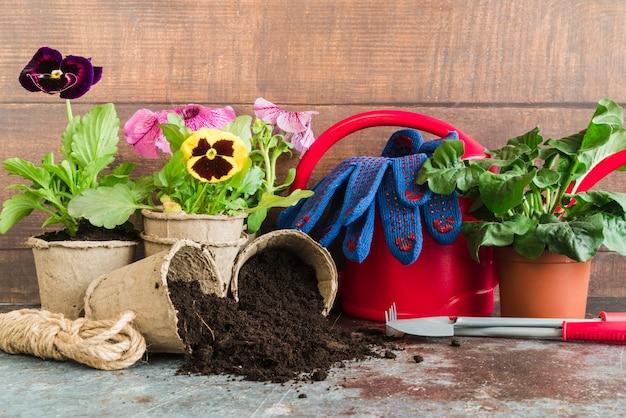 Herramientas de jardinería; cuerda; regadera; guantes sobre fondo de hormigón contra pared de madera. Foto gratis