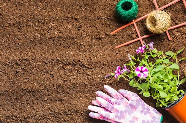 Herramientas de jardinería sobre la tierra visto desde arriba Foto gratis