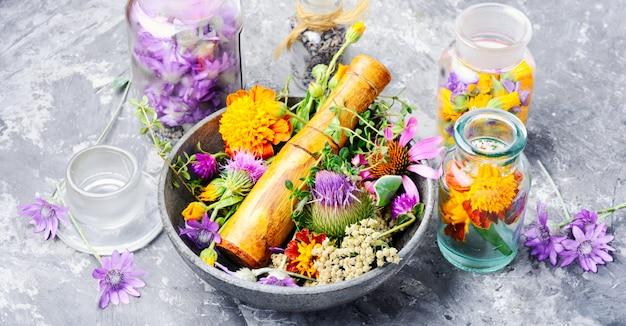 Hierbas medicinales flores Foto Premium