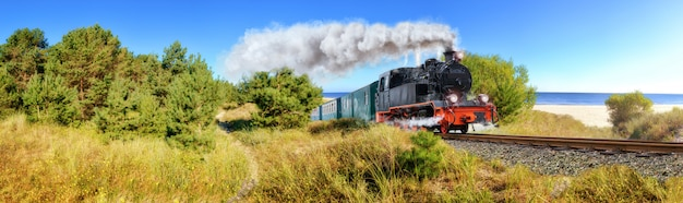 Histórico tren de vapor alemán en primavera, rugen, alemania Foto Premium