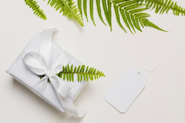 Hoja de helecho en caja de regalo blanca con etiqueta sobre fondo liso Foto gratis