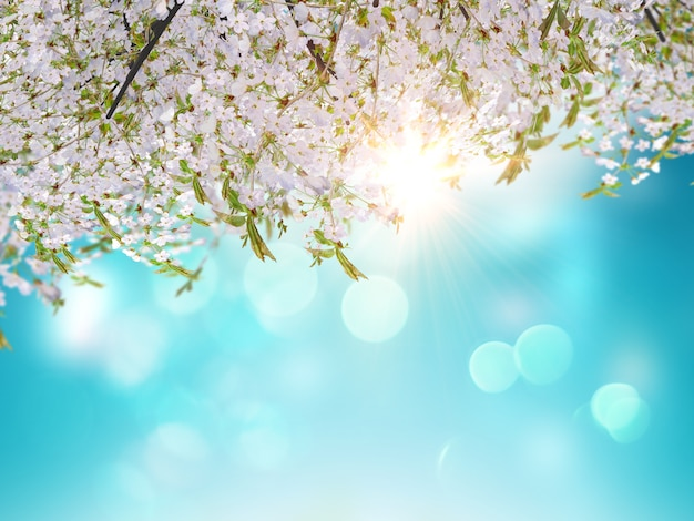 Hojas de cerezo en 3d sobre un fondo de cielo azul Foto gratis