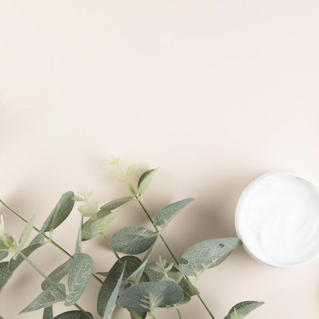 Hojas y crema corporal sobre fondo liso Foto gratis