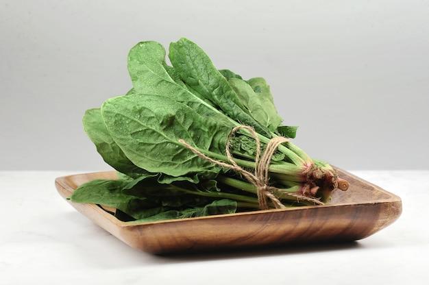 Cultivar Espinaca en ramillo