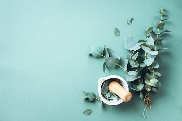 Hojas de eucalipto y mortero blanco, mortero. ingredientes para medicina alternativa Foto Premium