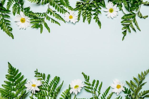 Hojas y flores sobre fondo azul claro. Foto gratis