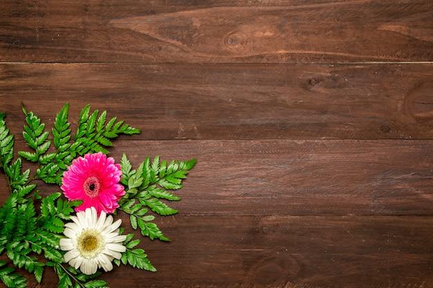 Hojas de helecho y flores de gerbera. Foto gratis