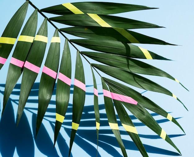Hojas de helecho tropical pintadas de verde con sombras Foto gratis