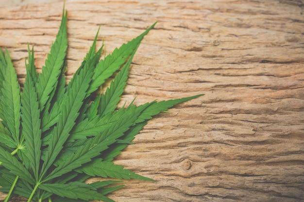Hojas de marihuana sobre suelos de madera. Foto gratis