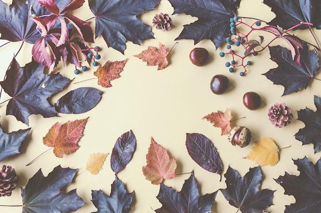 Hojas de otoño y castañas en amarillo. Foto Premium