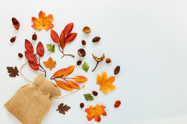 Hojas de otoño planas sobre fondo blanco Foto gratis
