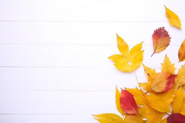 Hojas de otoño rojas y anaranjadas en la tabla blanca Foto Premium