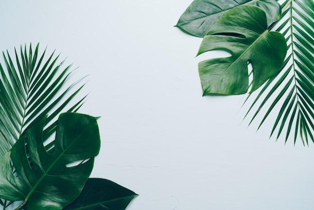 Hojas de palmeras tropicales sobre fondo de color con copyspace Foto Premium