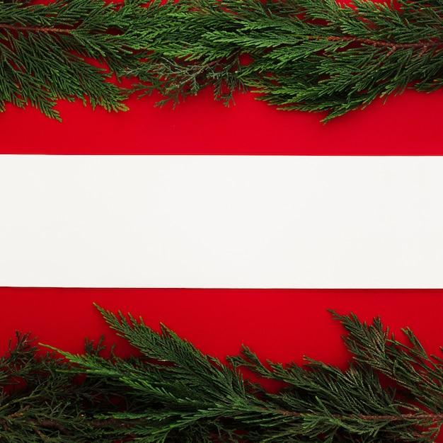 Hojas de pino sobre un fondo rojo con una nota en blanco Foto gratis