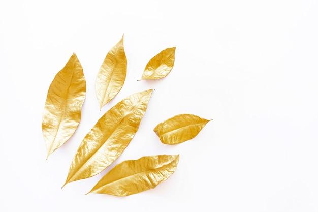 Hojas secas doradas aisladas sobre fondo blanco Foto Premium