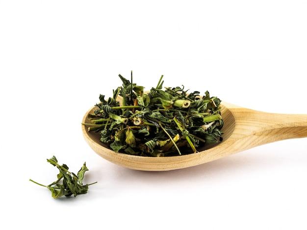 Las hojas secas de hierba de san juan yacen en una cuchara de madera sobre un blanco Foto Premium