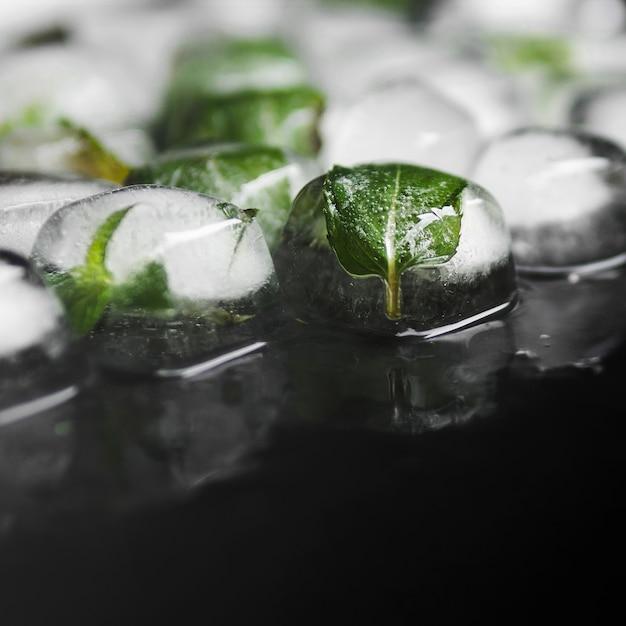 Hojas verdes en cubitos de hielo. Foto gratis