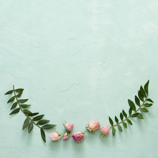 Hojas verdes y hermoso capullo de rosa sobre fondo verde con textura Foto gratis