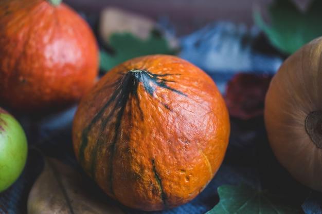 Hola otoño. calabazas naranjas manzanas follaje otoñal cuadros sobre un fondo de madera Foto Premium