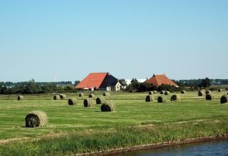 Holandés campos agrícolas Foto gratis