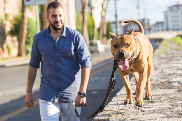 Hombre caminando con su perro. Foto Premium