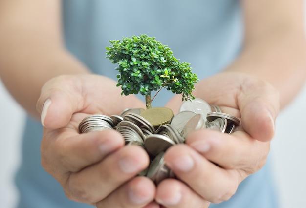 Hombre de negocios que sostiene el árbol que brota de un puñado de monedas. Foto Premium