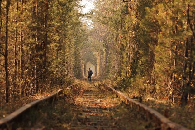 Un hombre solitario caminando por el túnel del amor. | Foto Premium