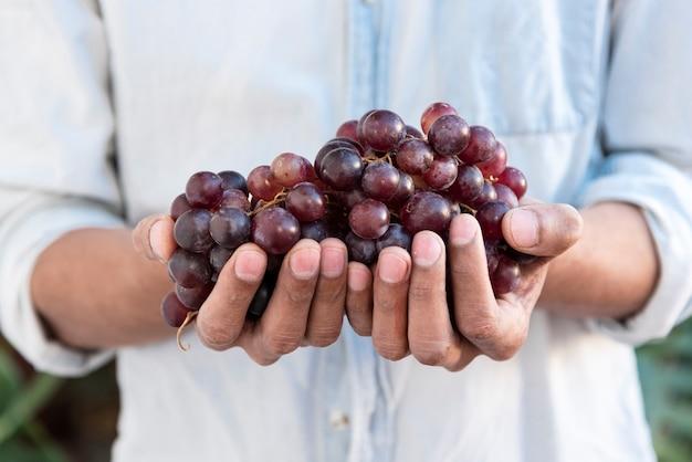 Hombre sujetando uvas rojas en manos Foto gratis