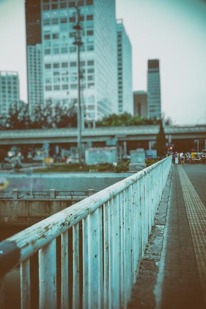 Horizonte de la ciudad a lo largo del río Foto gratis