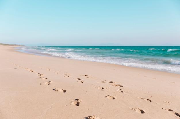 Huellas en la arena en la playa Foto gratis