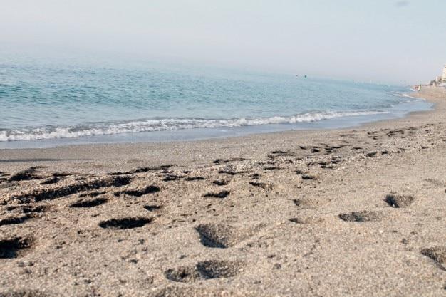 Te Quiero Arena De Playa A Orillas Del Mar Fotos De: Huellas Por La Orilla Del Mar