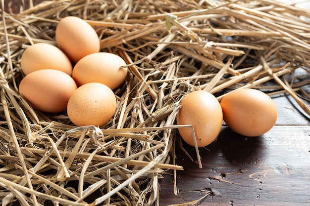 Huevo fresco de pollo. Foto gratis