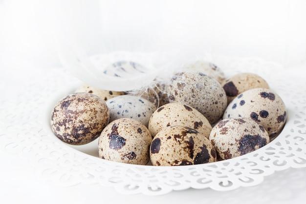 Huevos de codorniz sobre blanco Foto Premium