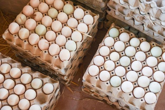 Huevos frescos en caja de huevo de pato blanco Foto Premium