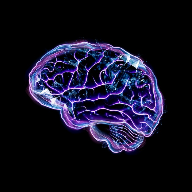La imagen del cerebro humano. Foto Premium