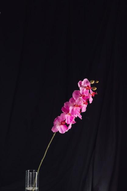Increíbles flores frescas de color rosa en la rama en el florero Foto gratis