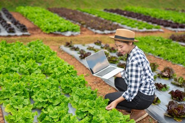 Inspección de calidad de huerta por agricultores. Foto gratis