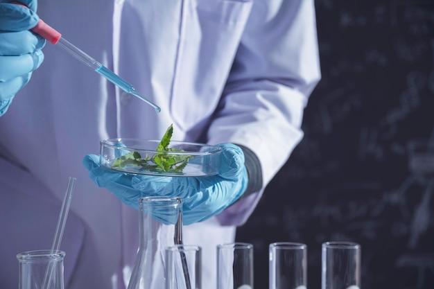 Investigador con tubos de ensayo químicos de laboratorio de vidrio con líquido para investigación analítica, médica, farmacéutica y científica. Foto Premium