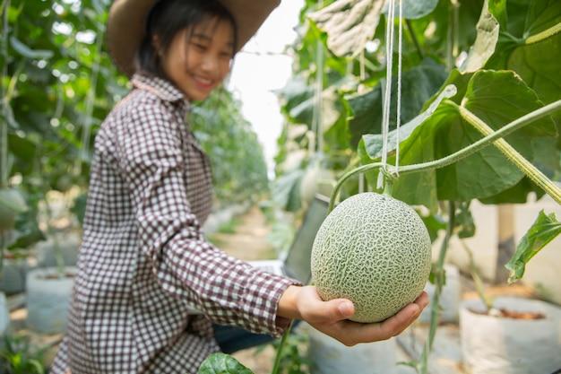 Los investigadores de plantas están comprobando los efectos del melón. Foto gratis