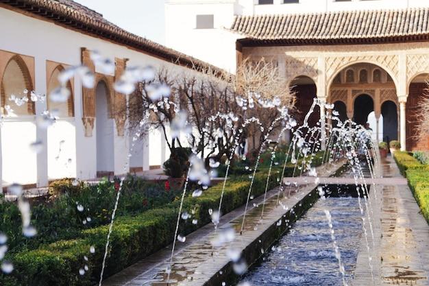 Jardin Arabe Descargar Fotos Premium - Jardin-arabe