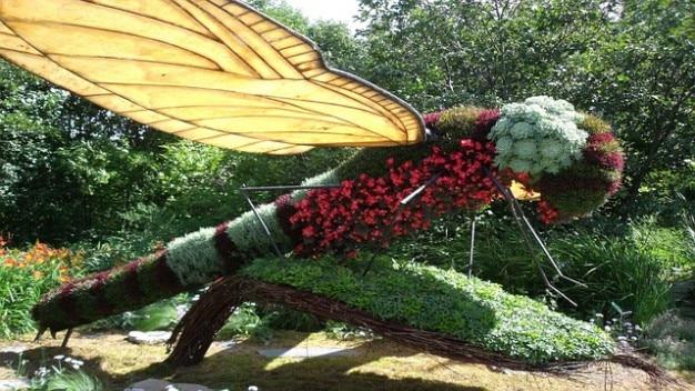 Jard n de plantas flores lib lula descargar fotos gratis for Jardin de plantas