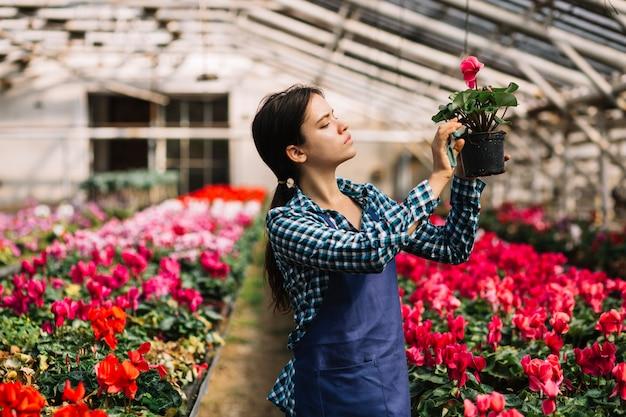 Jardinera trabajando en el invernadero Foto gratis