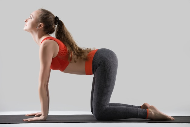 Joven mujer atractiva en la pose de bitilasana, estudio gris backg