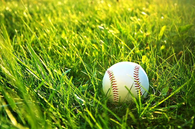 Juego de beisbol. Foto gratis