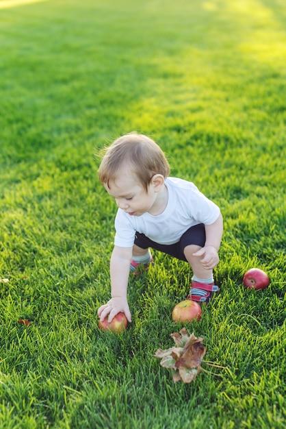 Lindo bebé jugando con manzanas en un césped verde en el parque Foto Premium